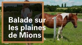 Grand Lyon Nature : sur les plaines de Mions