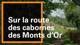 Grand Lyon Nature : sur la route des cabornes à Saint-Didier-au-Mont-d'Or