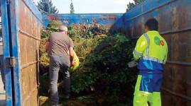 Le retour des collectes de déchets verts