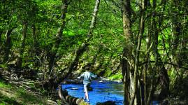 PLU-H : faire de l'environnement une priorité