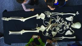 Les secrets de l'archéologie au musée gallo-romain