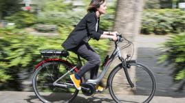 My Vélo'v présenté au salon de la mobilité électrique