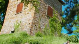 Grand Lyon Nature : le vallon des Torrières
