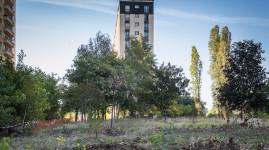 Caserne Raby : un projet urbain très 'nature' à Bron