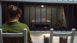 'Prison : au-delà des murs' au Musée des confluences