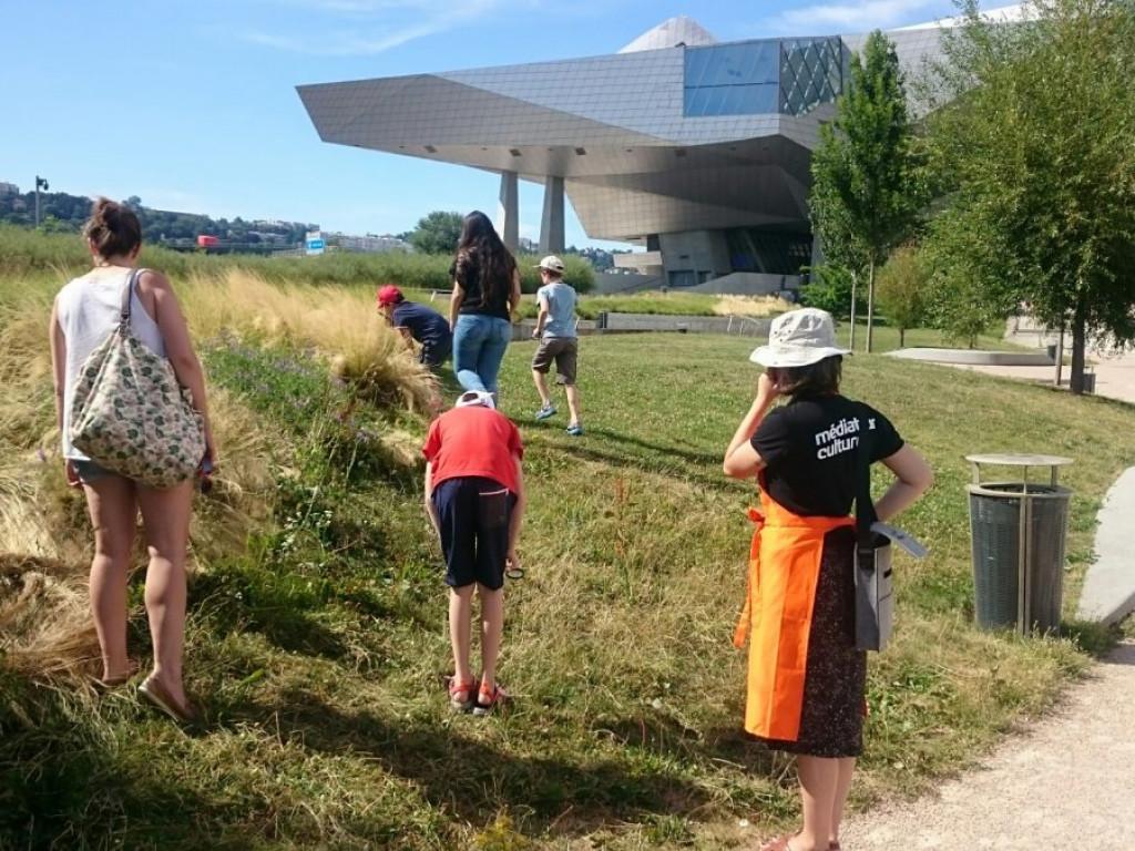 Musée des Confluences : cet été, c'est aussi dehors !