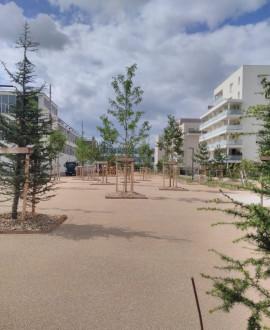 Carré de Soie : une partie de l'esplanade TASE est ouverte !