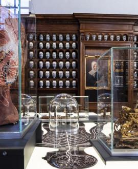 Journées du patrimoine : destination Grand Hôtel-Dieu