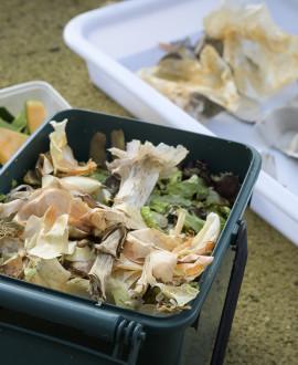 Je fais mon compost : les ateliers de formation démarrent