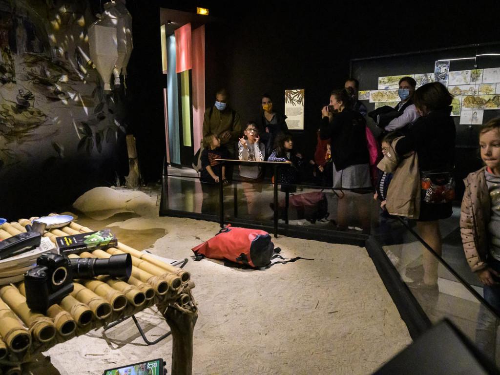 Musée des Confluences : voyage en terre malgache avec Makay