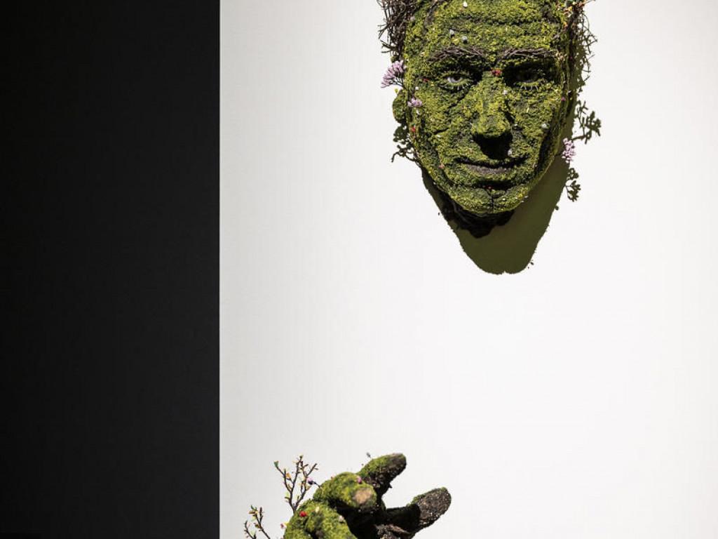 Musée des Confluences : deux expos à découvrir en images