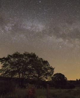 Extinction des lumières : la nuit sera belle dans la Métropole de Lyon