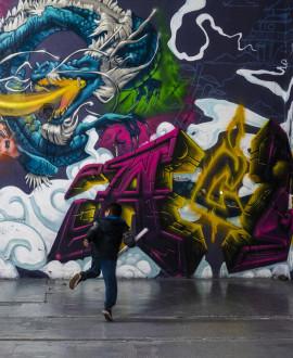 Zoo art show : 200 street artistes réunis à Lyon 6e