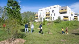 Une forêt urbaine à Sathonay-Camp
