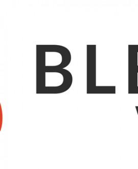 Blend Web Mix : Lyon crée l'événement