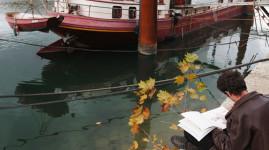 L'automne au Grand Lyon