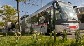 Ouest lyonnais : la ligne C6 prolongée et renforcée