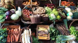 Les marchés de Lyon fêtent la gastronomie !