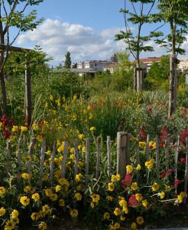 Une nouvelle génération de parcs urbains au Grand Lyon