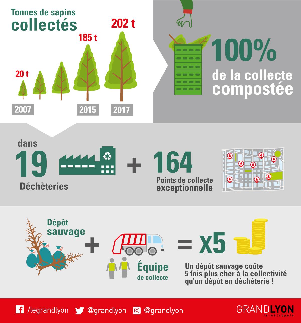 202 tonnes de sapins ont été ramassés dans la Métropole de Lyon lors de la période hivernale.