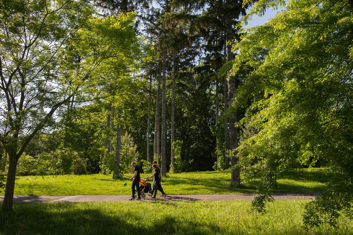 Avec plus de 18 000 arbres recensé sur ses 178 hectares, le parc de Parilly offre un cadre très agréable pour une balade en famille © Laurence Danière // Grand Lyon